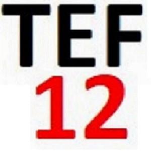 TEF1-İZ